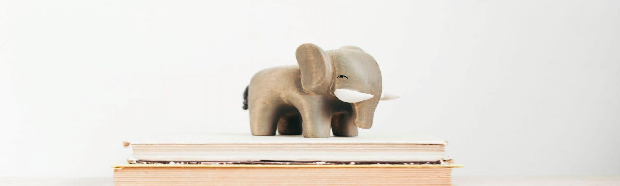 A Wandering Elephant